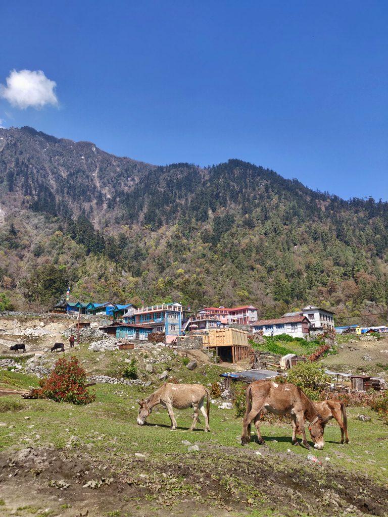 Chame Village Nepal